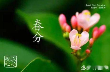关于春季节气的谚语